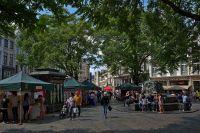 grasmarkt-paul-van-nylen