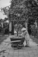 Tuinieren_-_Karl_Mootgat